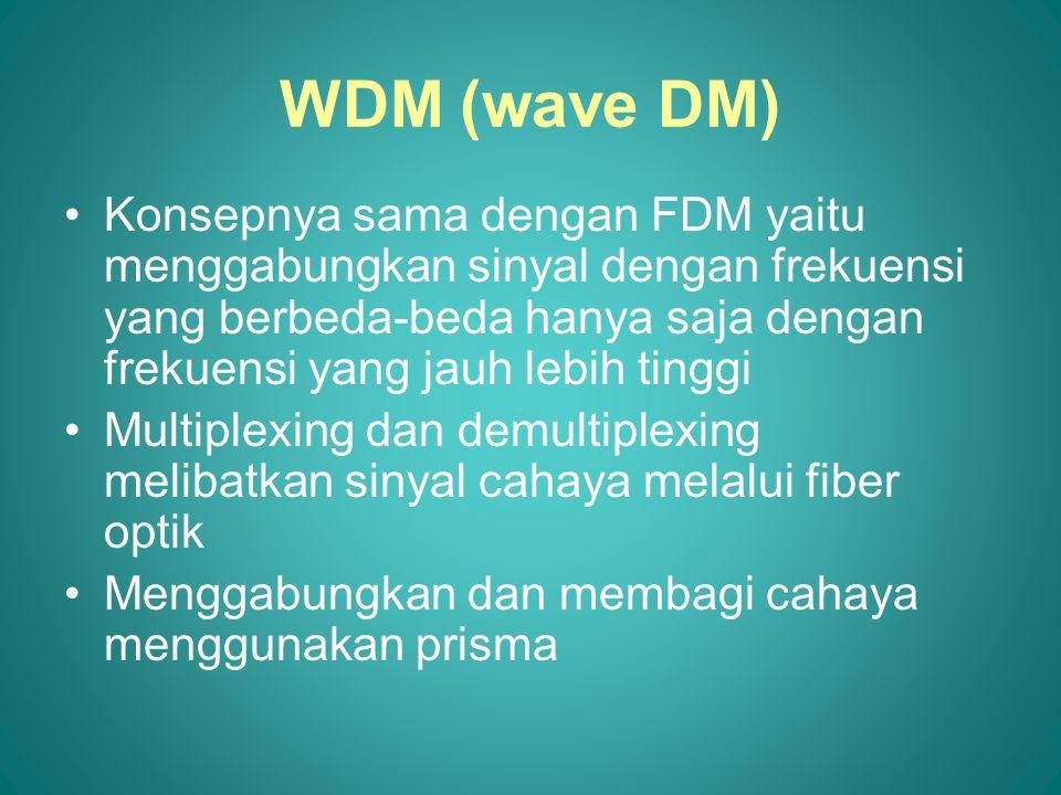 WDM (wave DM)