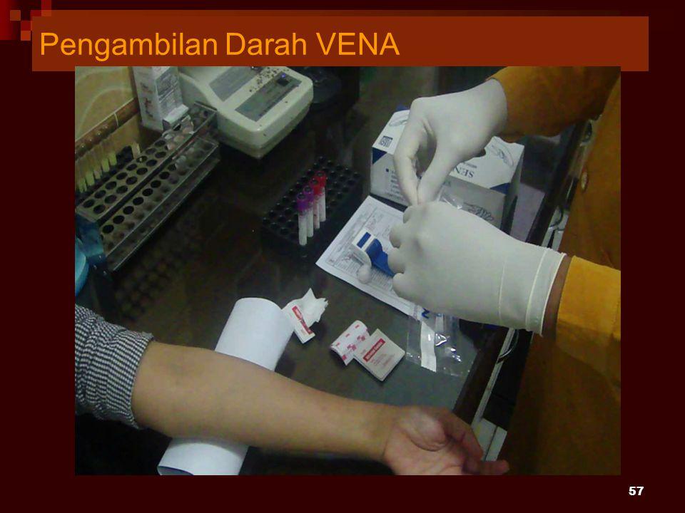 Pengambilan Darah VENA