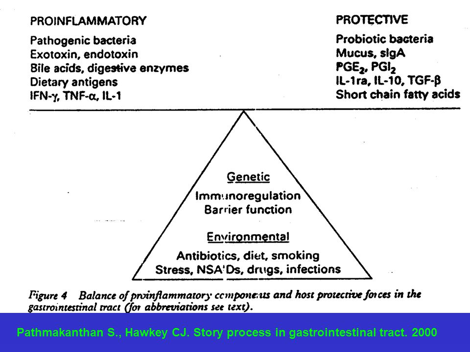 Pathmakanthan S. , Hawkey CJ. Story process in gastrointestinal tract