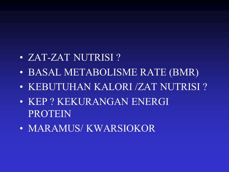 ZAT-ZAT NUTRISI BASAL METABOLISME RATE (BMR) KEBUTUHAN KALORI /ZAT NUTRISI KEP KEKURANGAN ENERGI PROTEIN.