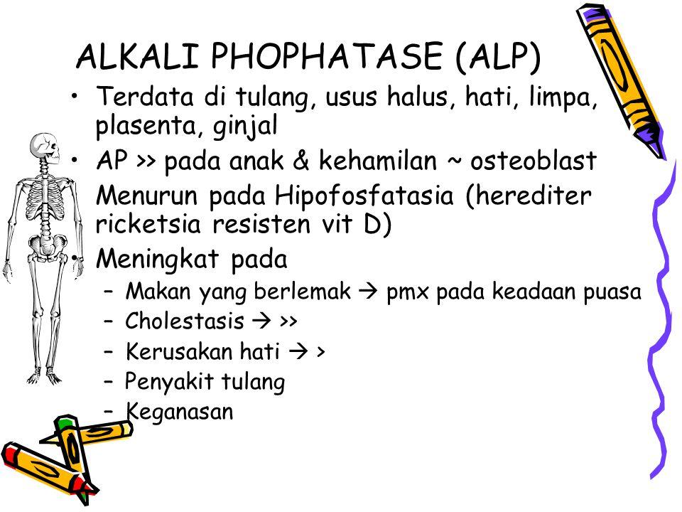 ALKALI PHOPHATASE (ALP)