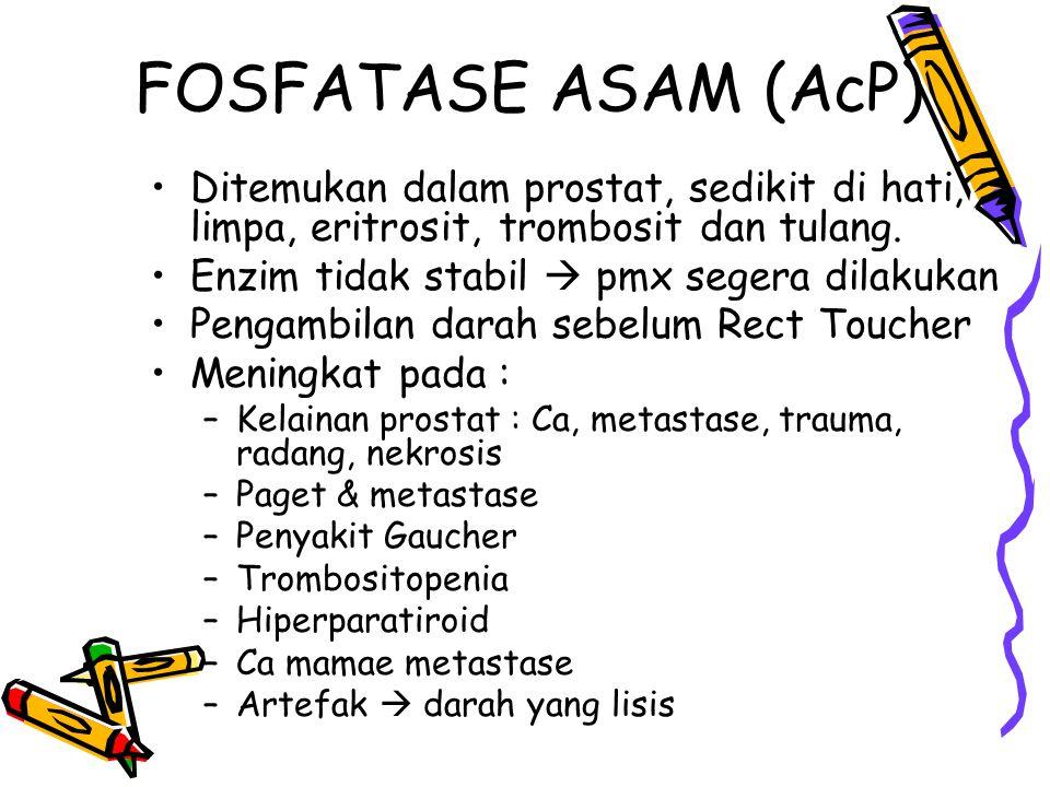 FOSFATASE ASAM (AcP) Ditemukan dalam prostat, sedikit di hati, limpa, eritrosit, trombosit dan tulang.