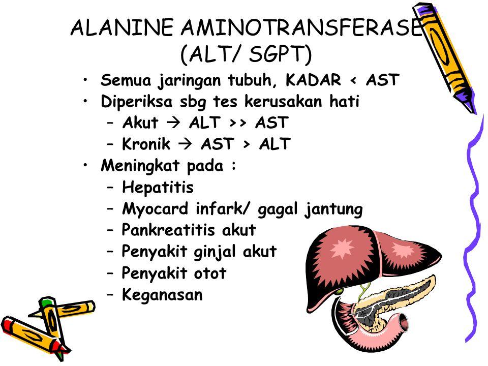 ALANINE AMINOTRANSFERASE (ALT/ SGPT)