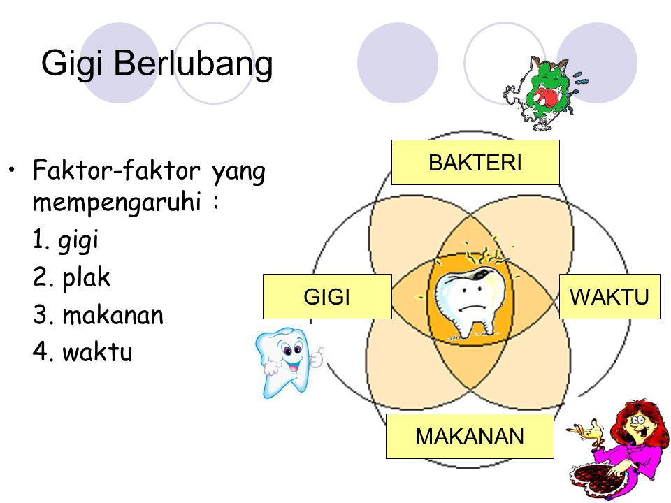 Gigi Berlubang Faktor-faktor yang mempengaruhi : 1. gigi 2. plak