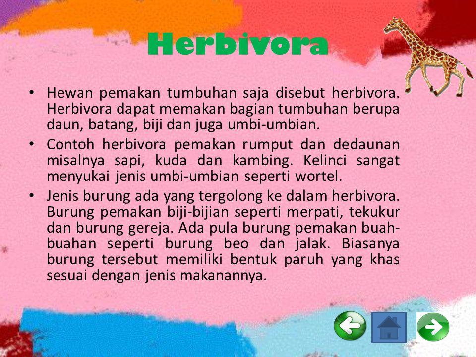 Herbivora Hewan pemakan tumbuhan saja disebut herbivora. Herbivora dapat memakan bagian tumbuhan berupa daun, batang, biji dan juga umbi-umbian.