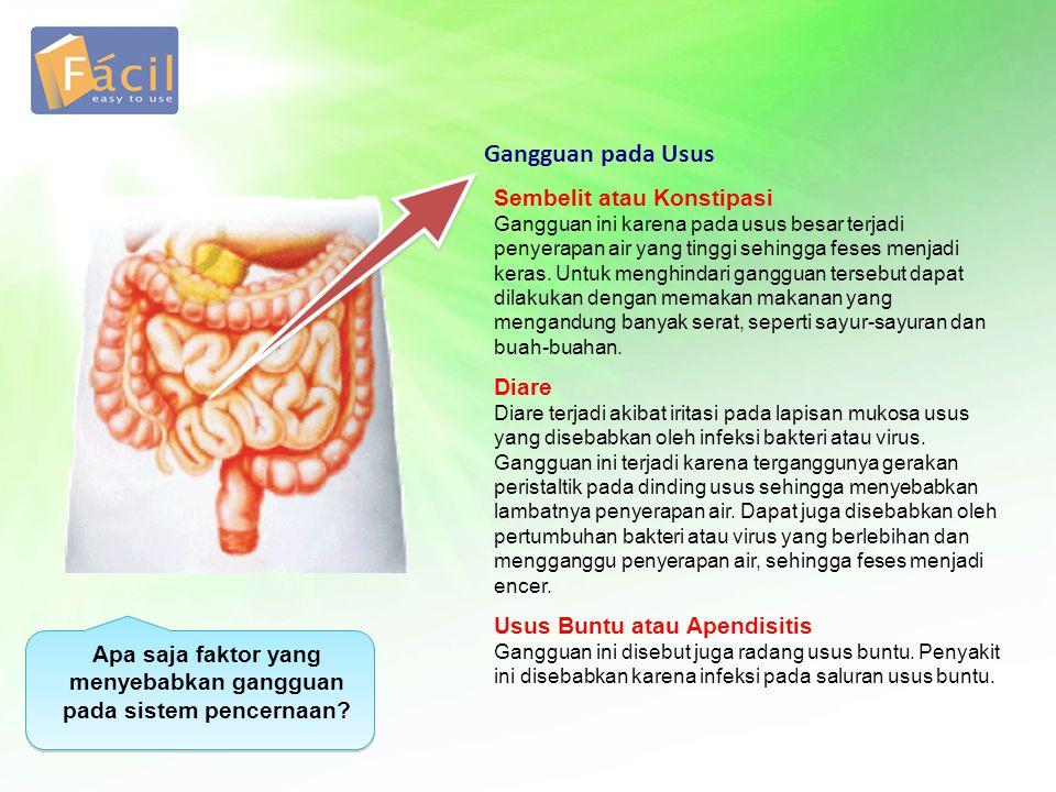 Apa saja faktor yang menyebabkan gangguan pada sistem pencernaan