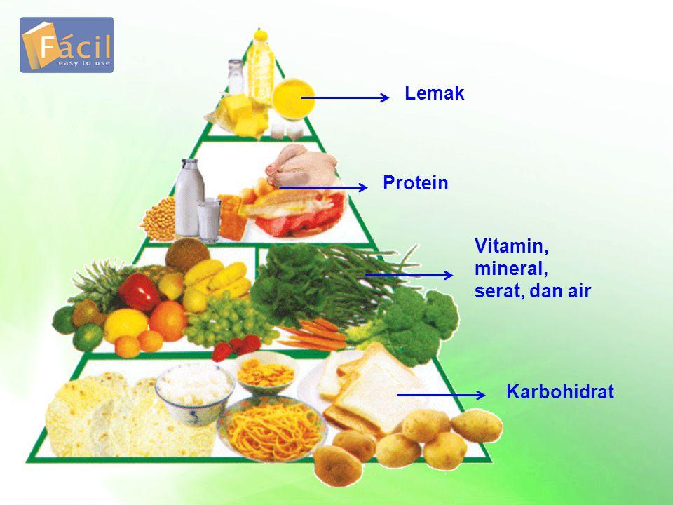 Lemak Protein Vitamin, mineral, serat, dan air Karbohidrat