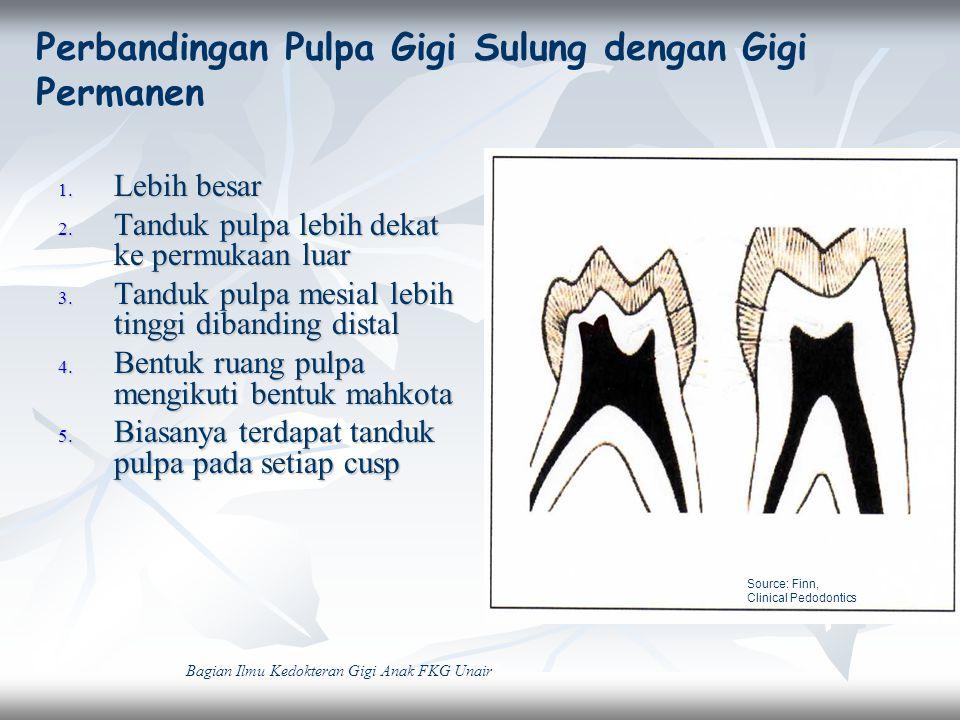 Perbandingan Pulpa Gigi Sulung dengan Gigi Permanen