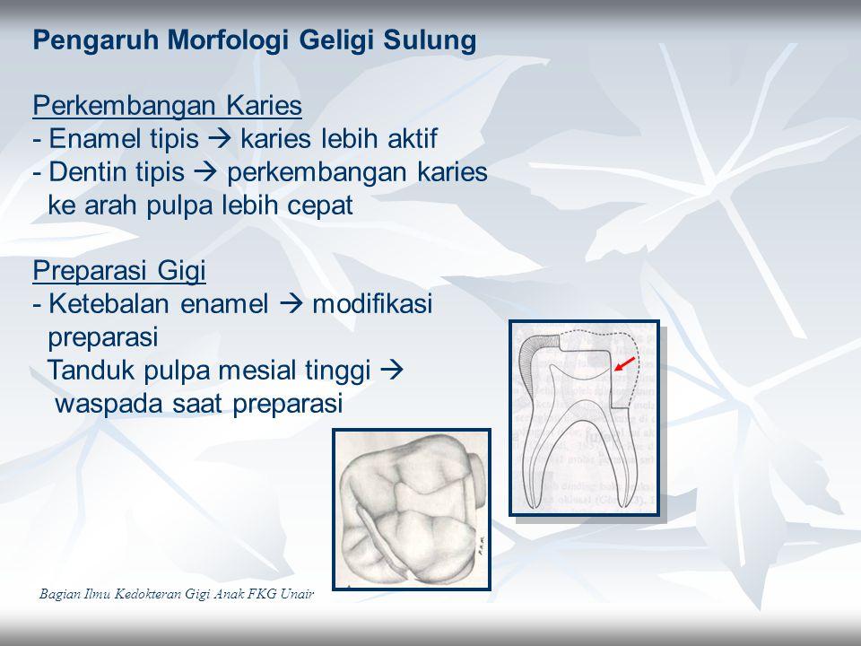 Pengaruh Morfologi Geligi Sulung Perkembangan Karies