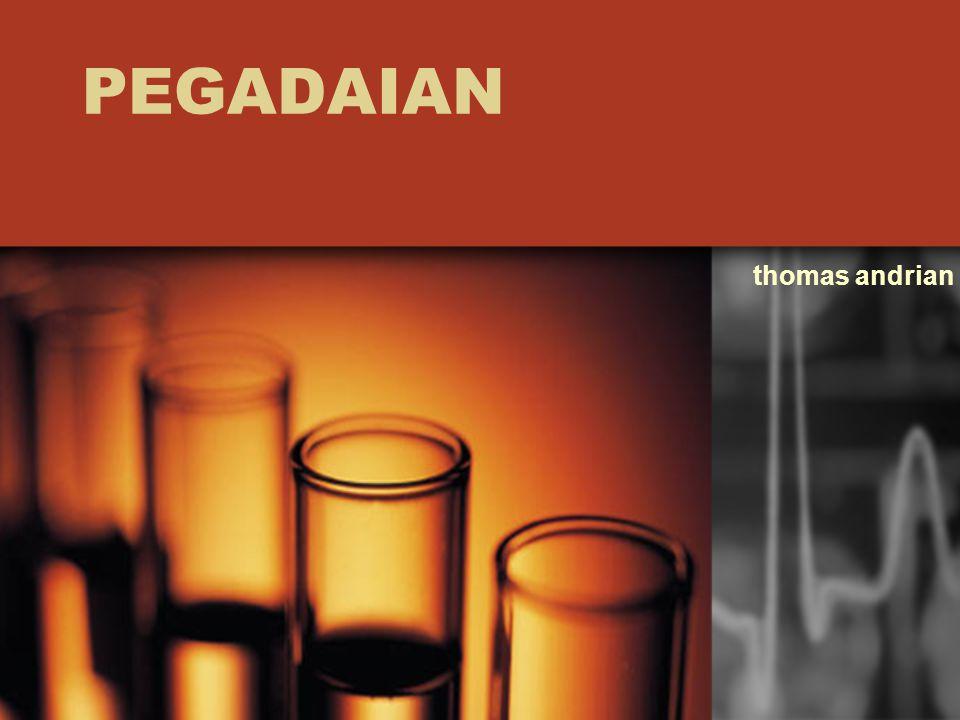 PEGADAIAN thomas andrian