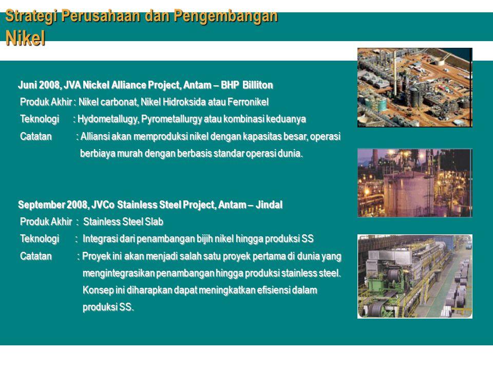 Strategi Perusahaan dan Pengembangan Nikel
