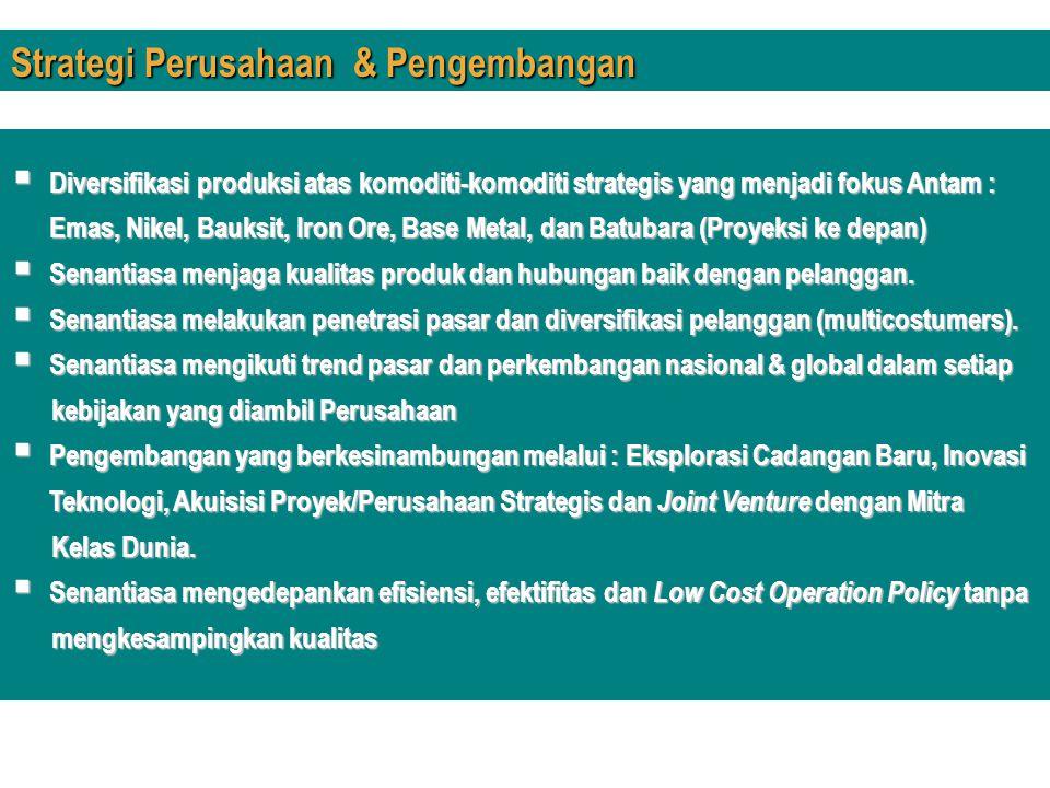 Strategi Perusahaan & Pengembangan