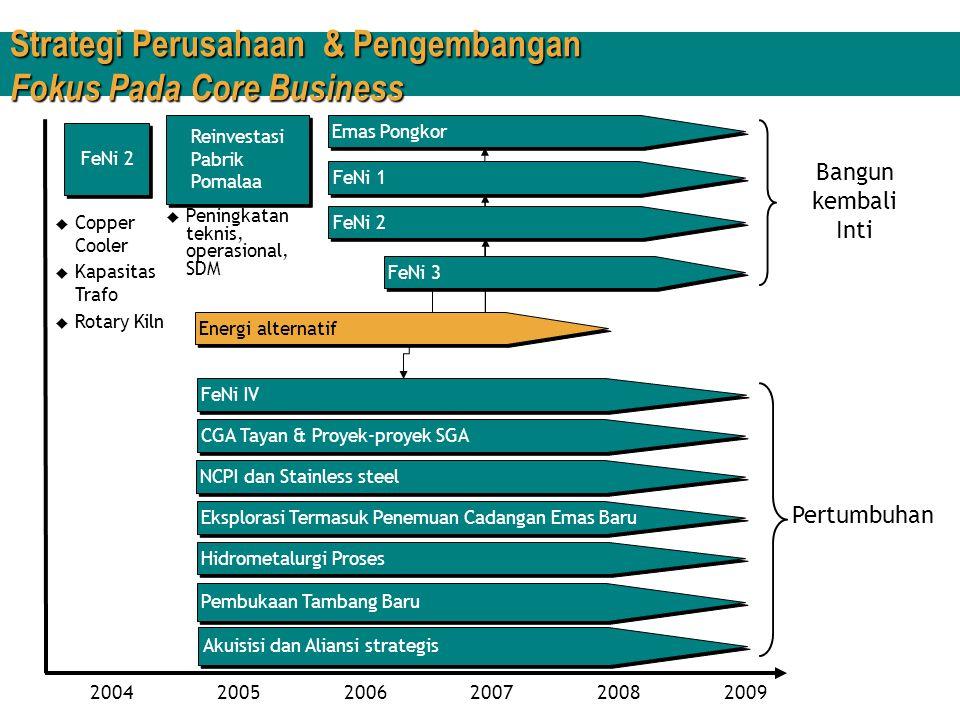 Strategi Perusahaan & Pengembangan Fokus Pada Core Business