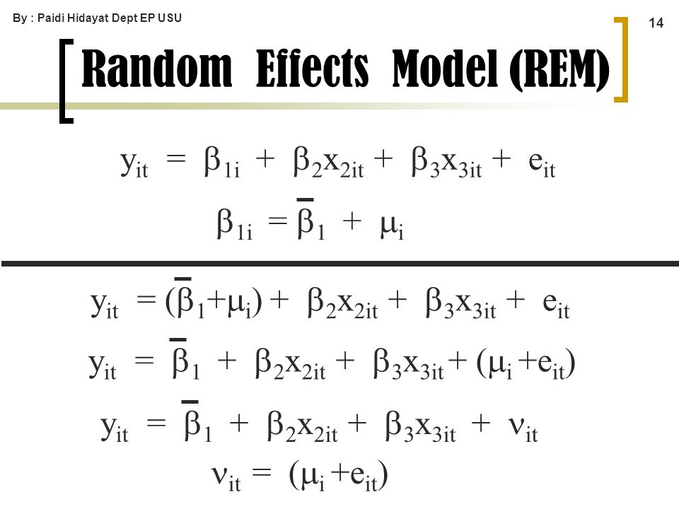Random Effects Model (REM)