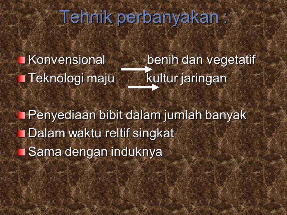 Tehnik perbanyakan : Konvensional benih dan vegetatif