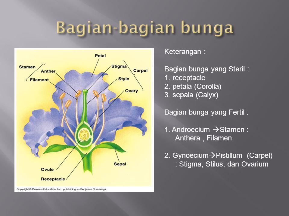 Bagian-bagian bunga Keterangan : Bagian bunga yang Steril :