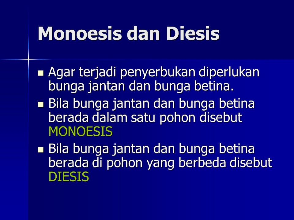 Monoesis dan Diesis Agar terjadi penyerbukan diperlukan bunga jantan dan bunga betina.