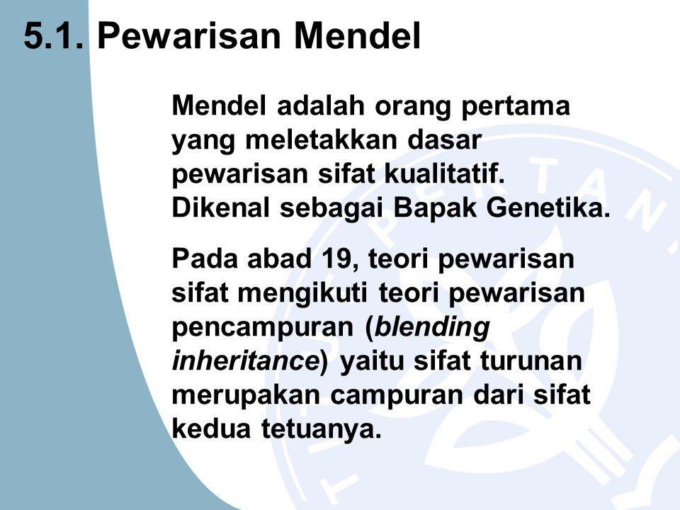 5.1. Pewarisan Mendel Mendel adalah orang pertama yang meletakkan dasar pewarisan sifat kualitatif. Dikenal sebagai Bapak Genetika.
