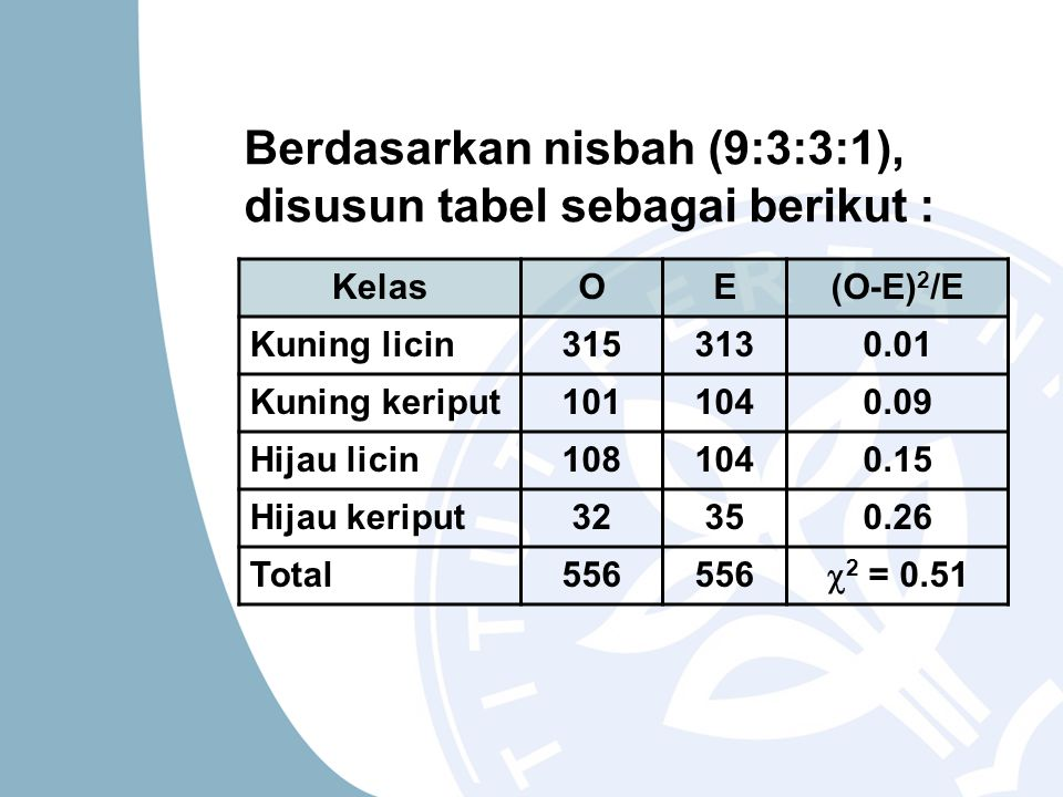 Berdasarkan nisbah (9:3:3:1), disusun tabel sebagai berikut :