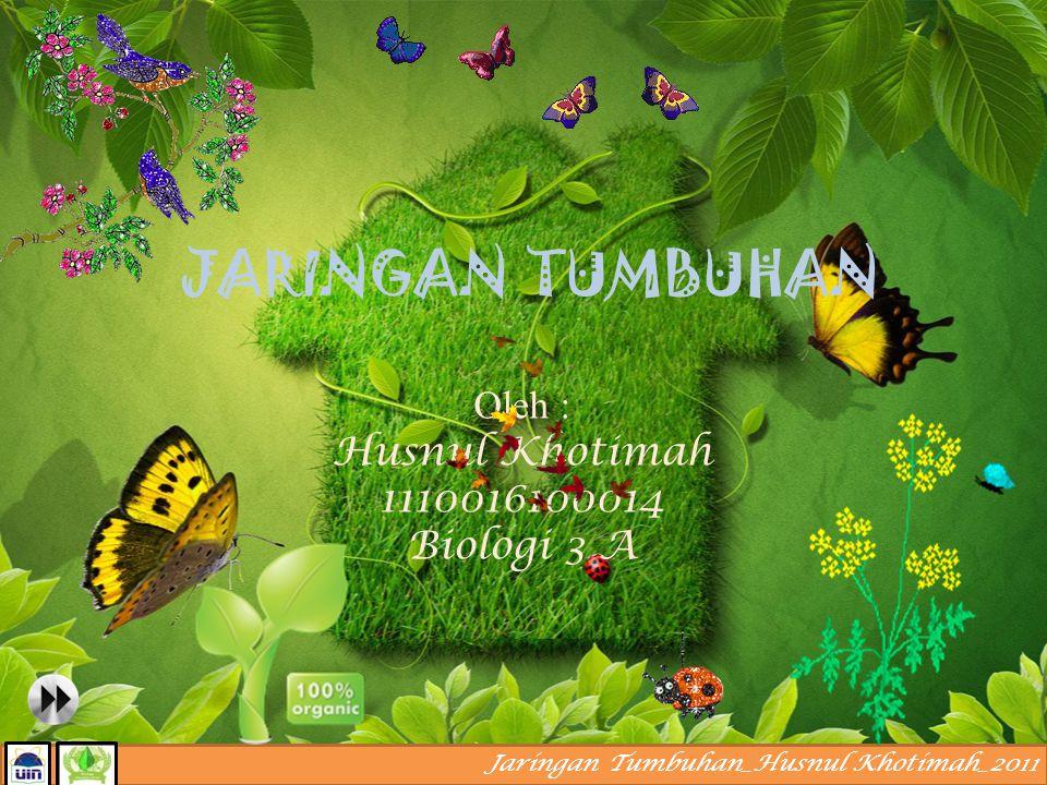 Oleh : Husnul Khotimah 1110016100014 Biologi 3 A