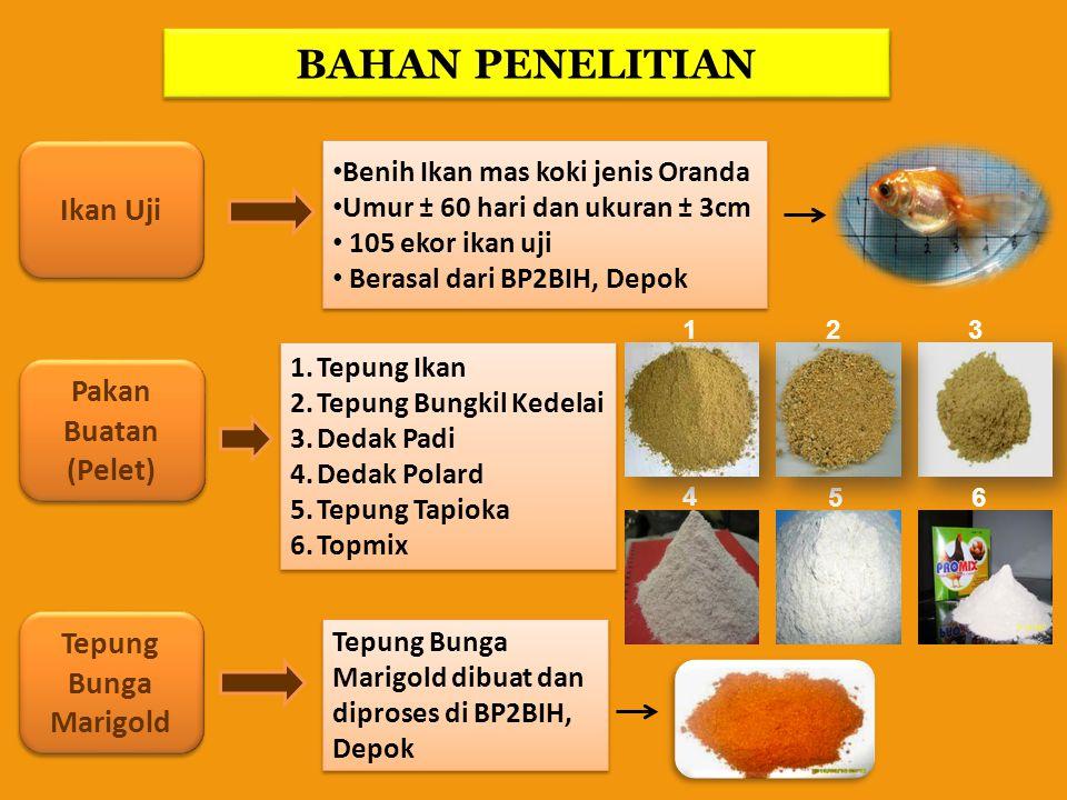 BAHAN PENELITIAN Ikan Uji Pakan Buatan (Pelet) Tepung Bunga Marigold