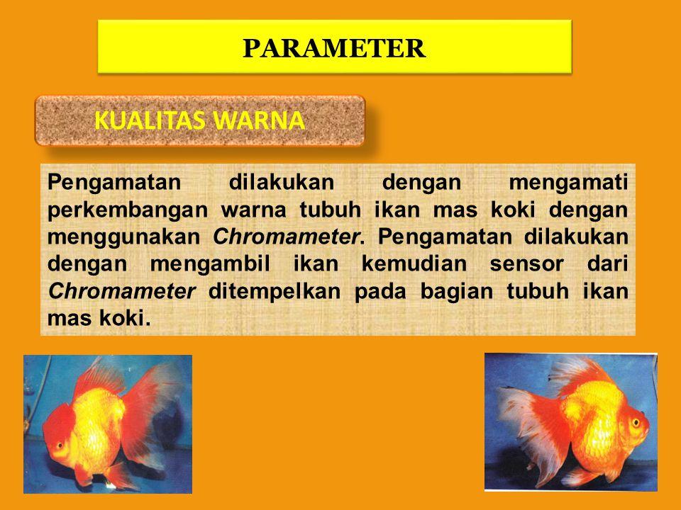 KUALITAS WARNA PARAMETER