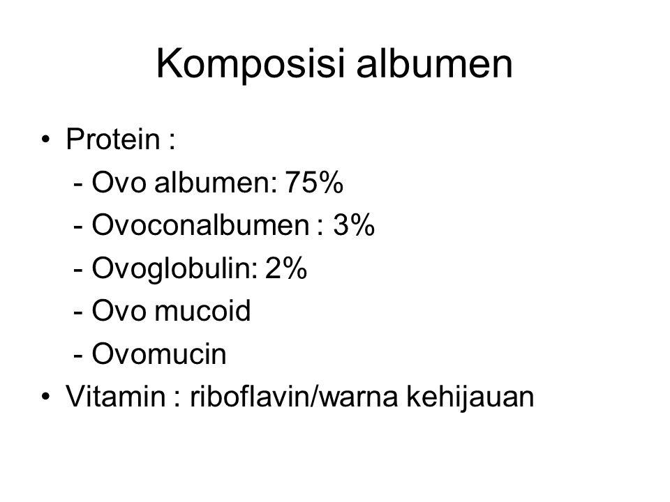 Komposisi albumen Protein : - Ovo albumen: 75% - Ovoconalbumen : 3%