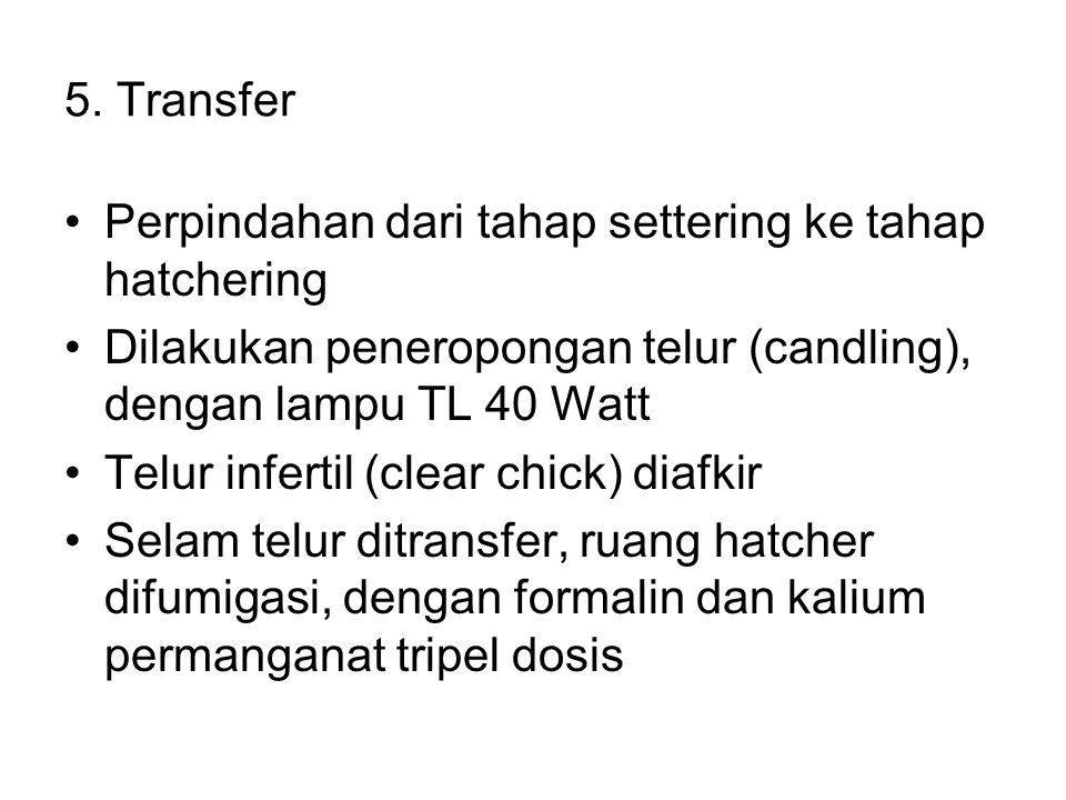 5. Transfer Perpindahan dari tahap settering ke tahap hatchering. Dilakukan peneropongan telur (candling), dengan lampu TL 40 Watt.
