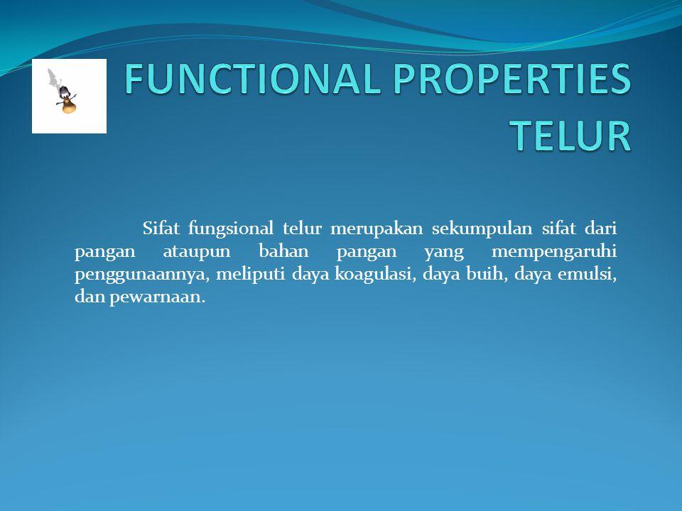 FUNCTIONAL PROPERTIES TELUR