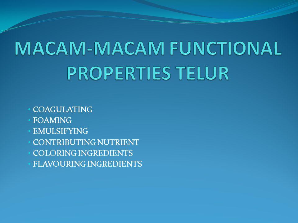 MACAM-MACAM FUNCTIONAL PROPERTIES TELUR