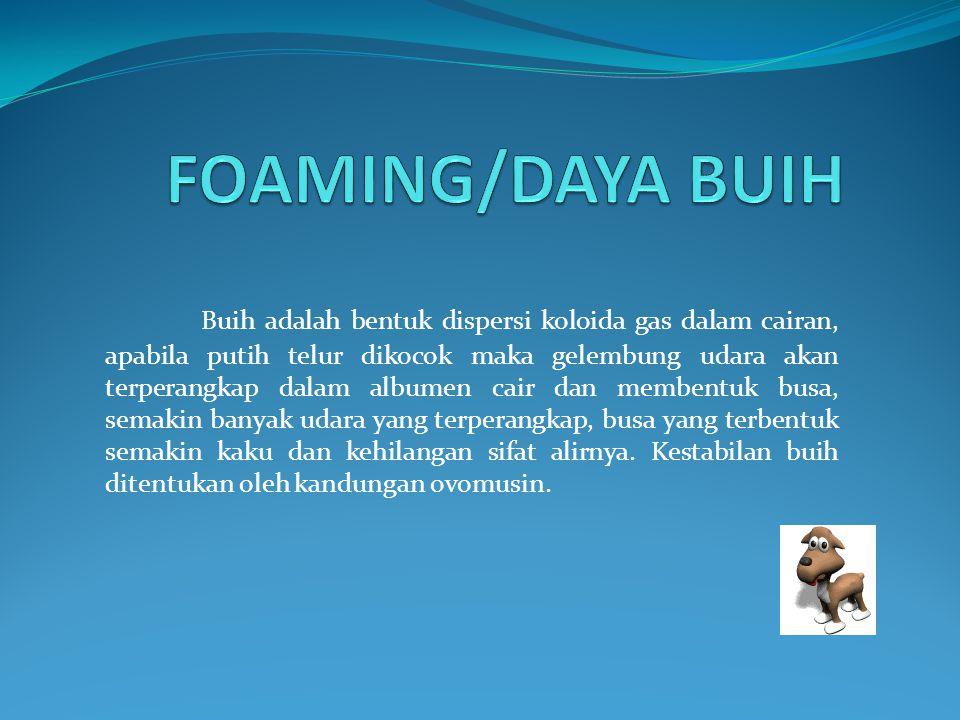 FOAMING/DAYA BUIH