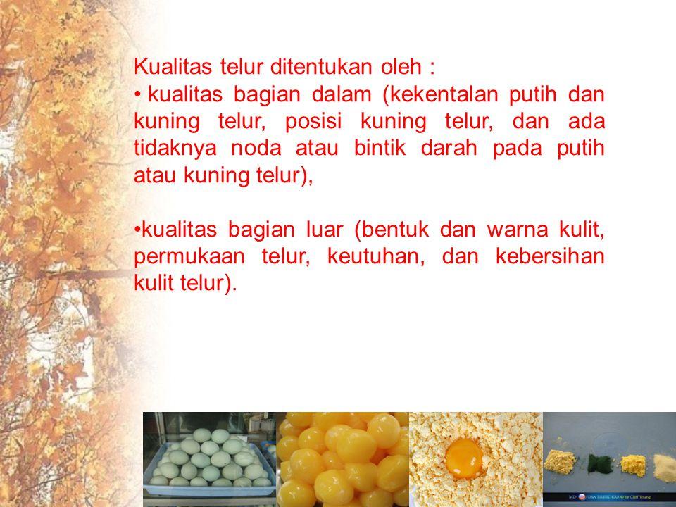 Kualitas telur ditentukan oleh :