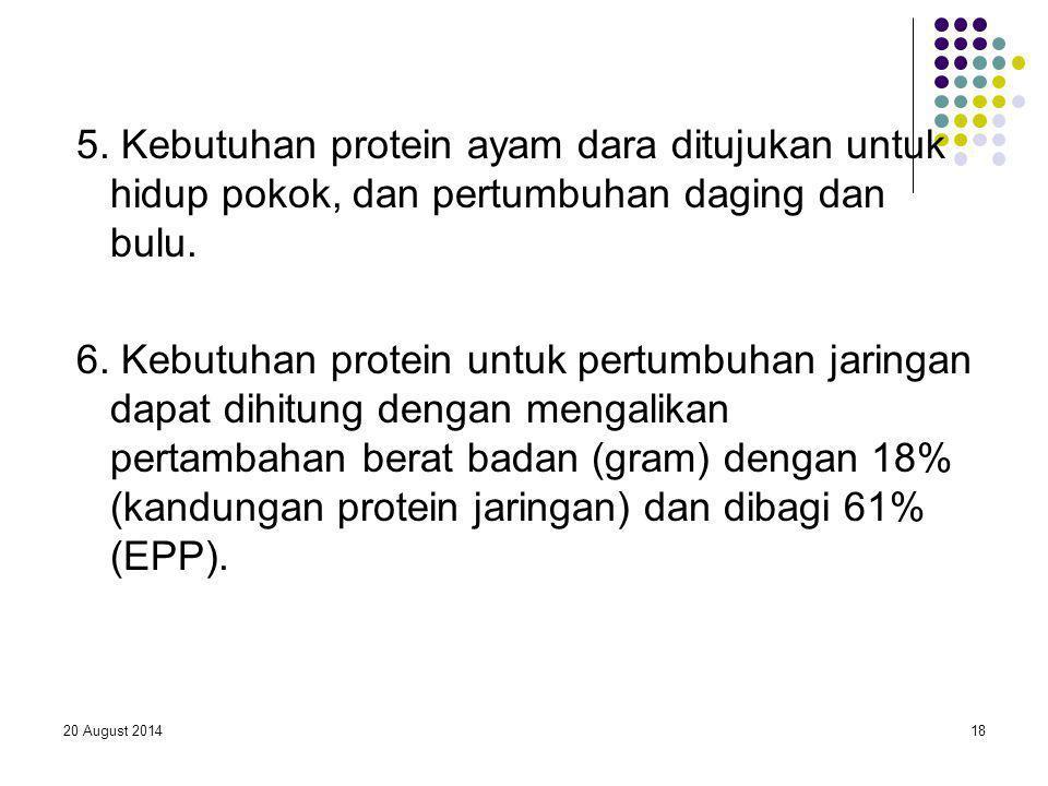 5. Kebutuhan protein ayam dara ditujukan untuk hidup pokok, dan pertumbuhan daging dan bulu.