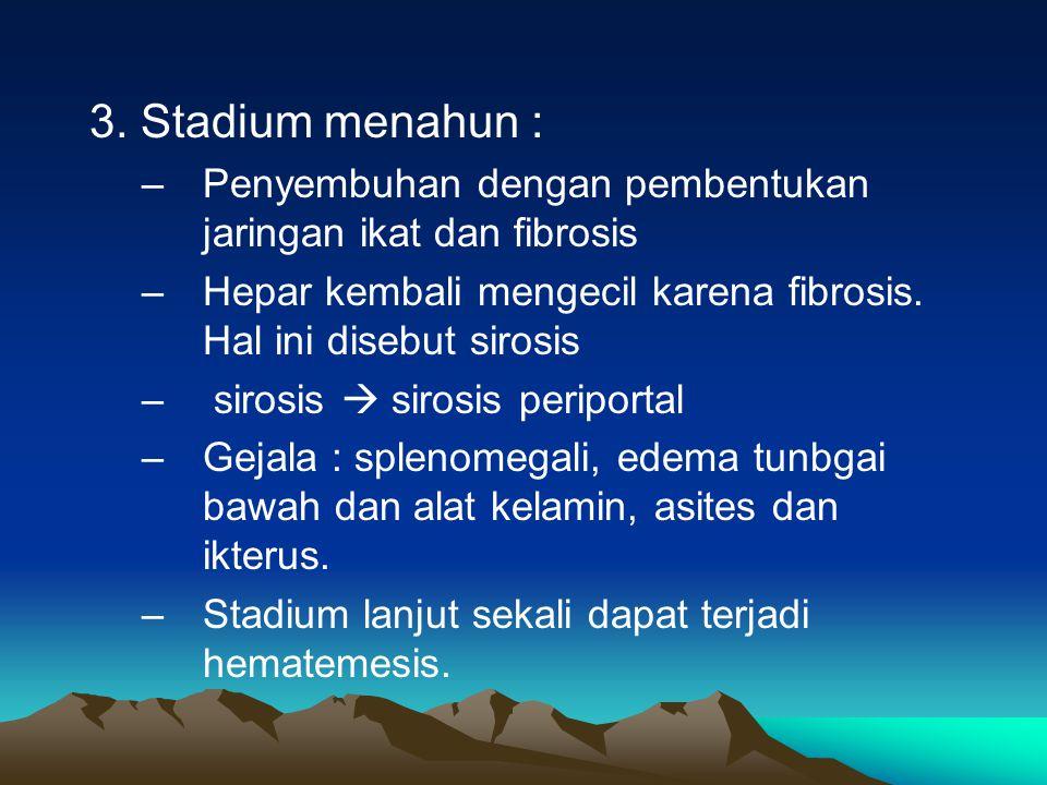 3. Stadium menahun : Penyembuhan dengan pembentukan jaringan ikat dan fibrosis. Hepar kembali mengecil karena fibrosis. Hal ini disebut sirosis.