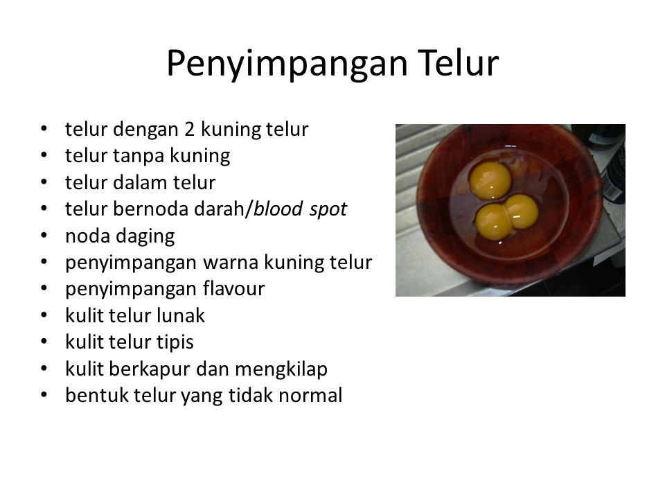 Penyimpangan Telur telur dengan 2 kuning telur telur tanpa kuning