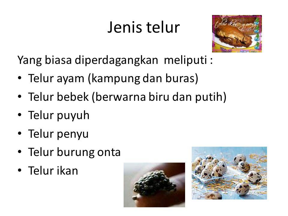 Jenis telur Yang biasa diperdagangkan meliputi :