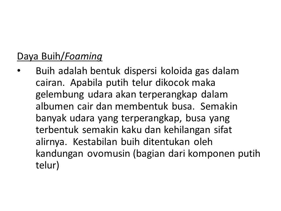 Daya Buih/Foaming