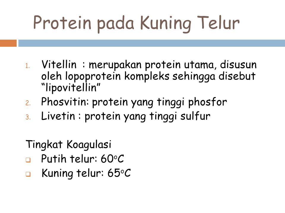Protein pada Kuning Telur