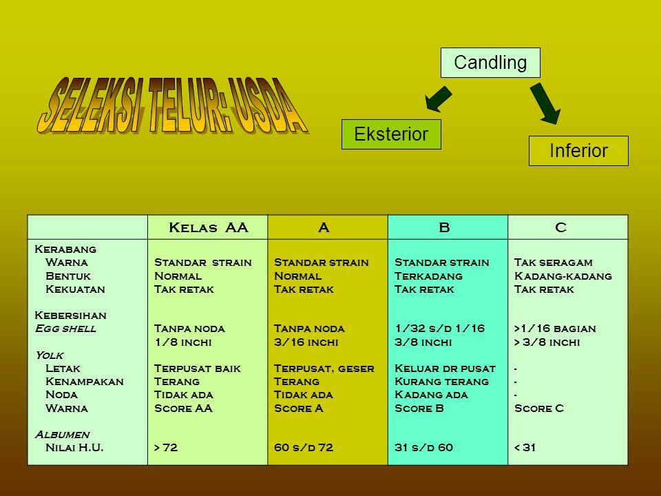 SELEKSI TELUR: USDA Candling Eksterior Inferior Kelas AA A B C