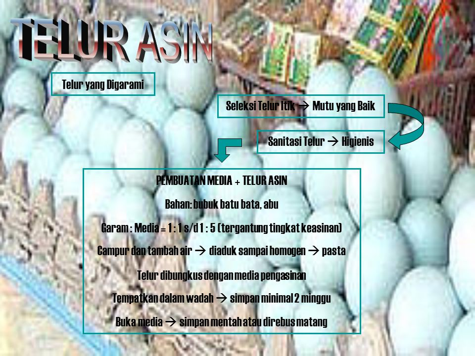 TELUR ASIN Telur yang Digarami Seleksi Telur Itik  Mutu yang Baik