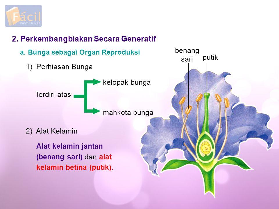 2. Perkembangbiakan Secara Generatif