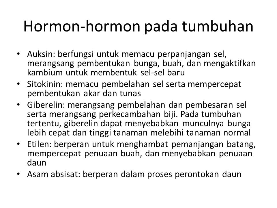 Hormon-hormon pada tumbuhan