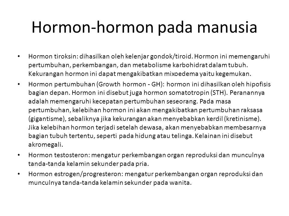 Hormon-hormon pada manusia