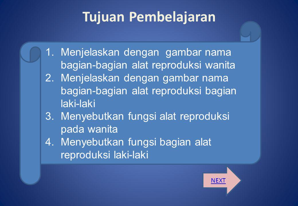 Tujuan Pembelajaran Menjelaskan dengan gambar nama bagian-bagian alat reproduksi wanita.