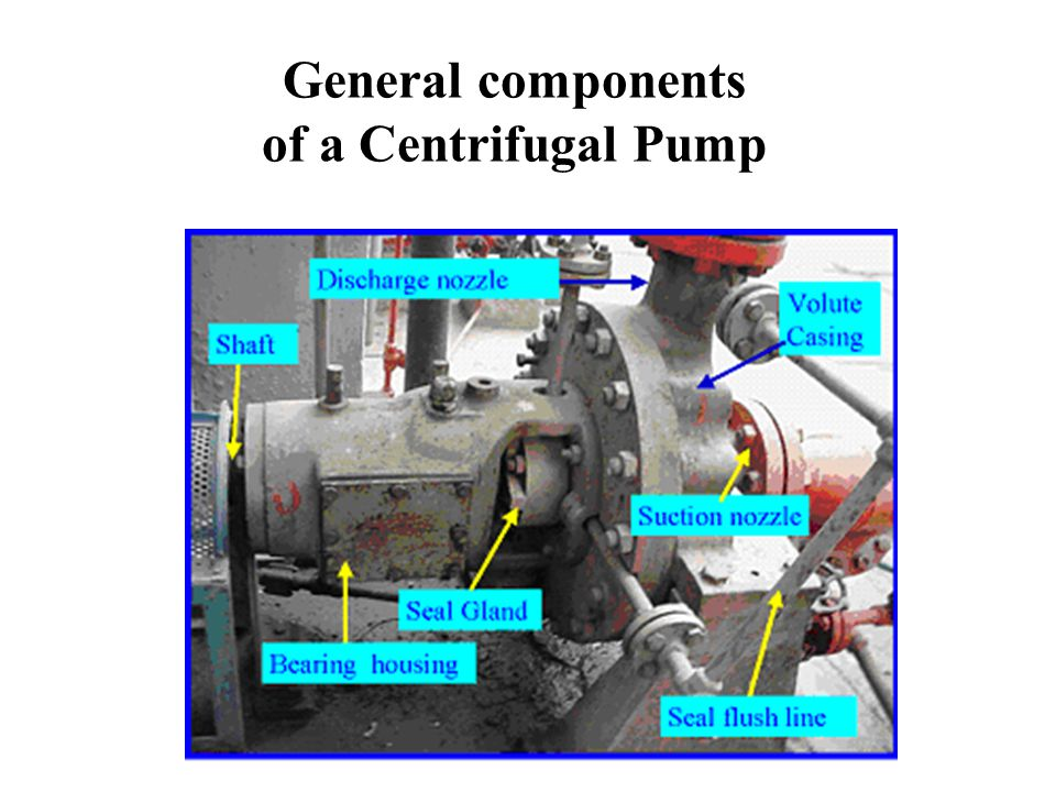 General components of a Centrifugal Pump