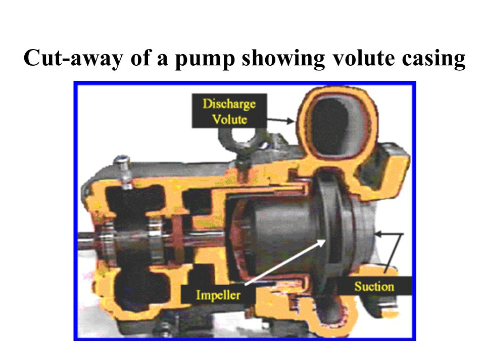 Cut-away of a pump showing volute casing