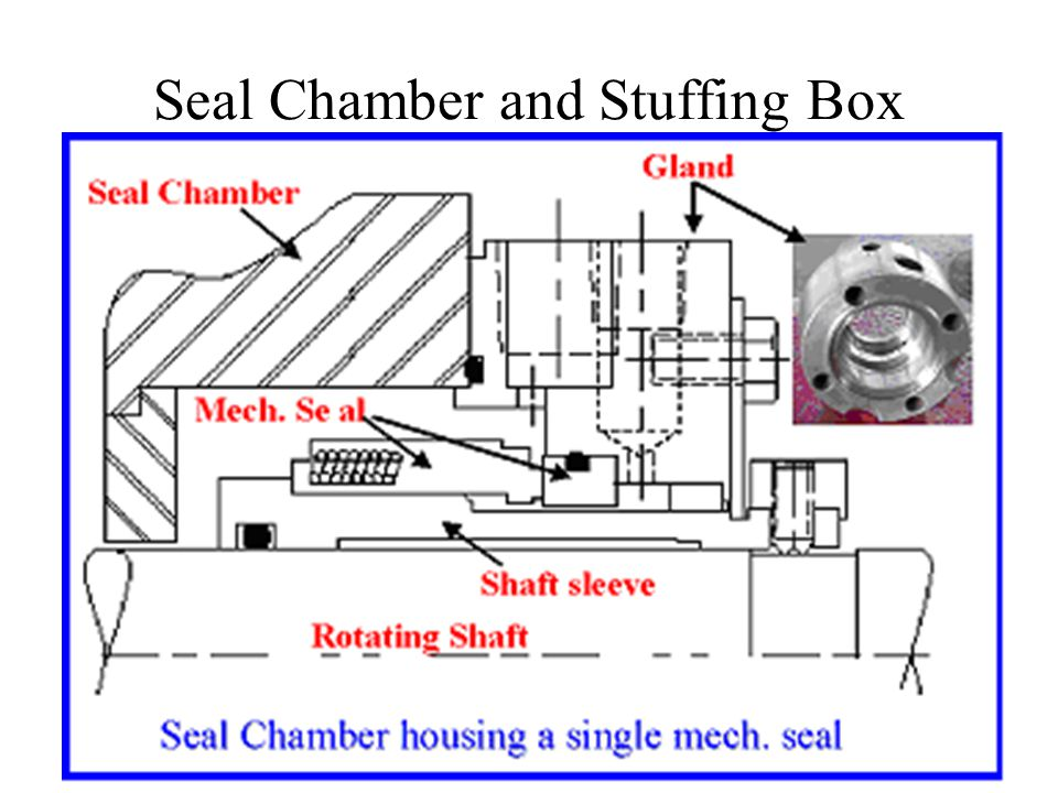 Seal Chamber and Stuffing Box