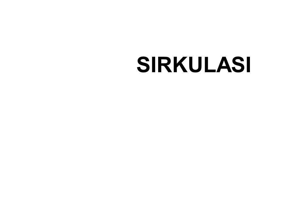 SIRKULASI