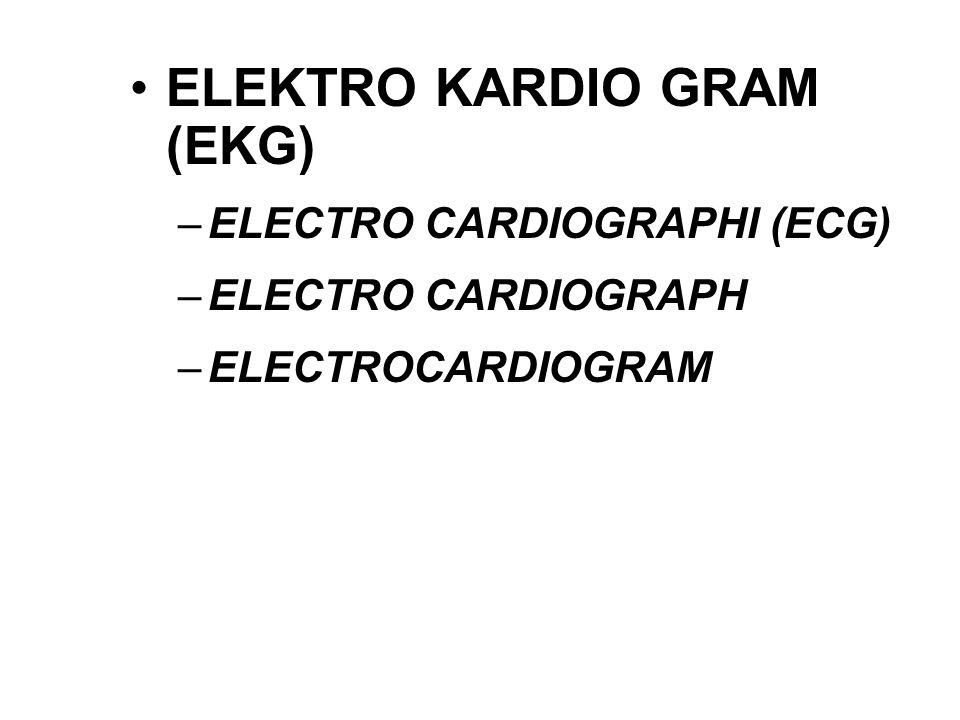ELEKTRO KARDIO GRAM (EKG)