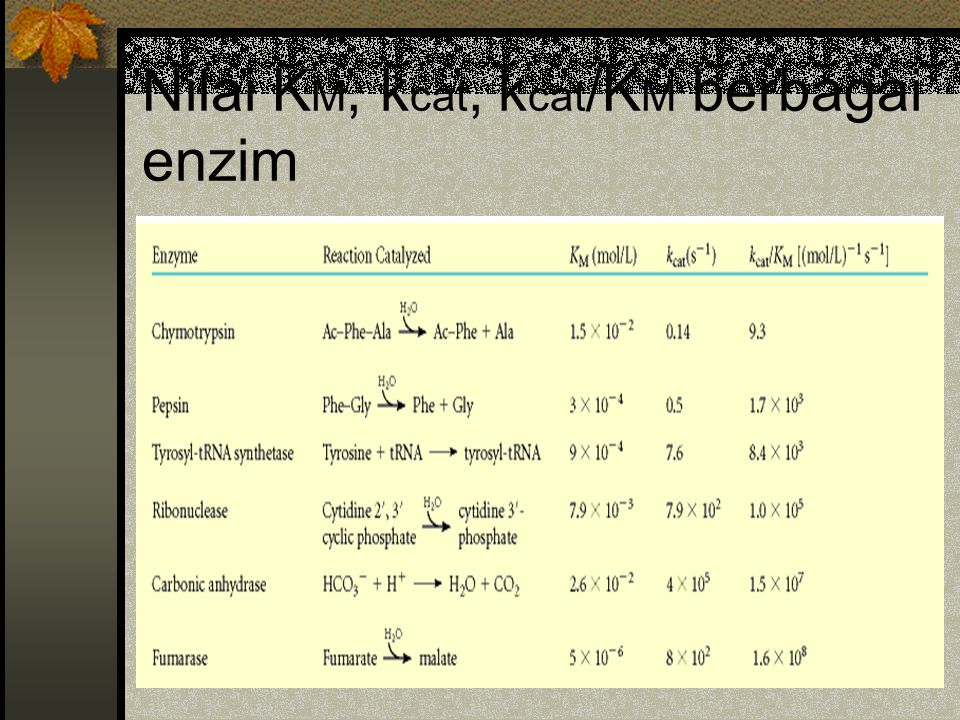 Nilai KM, kcat, kcat/KM berbagai enzim